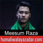 https://www.humaliwalyazadar.com/2018/09/meesum-raza-nohay-2019.html
