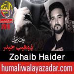 http://www.humaliwalayazadar.com/2016/10/zohaib-haider-nohay-2017.html