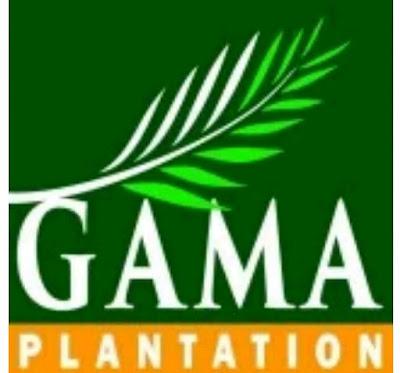 Karir GAMA Plantation