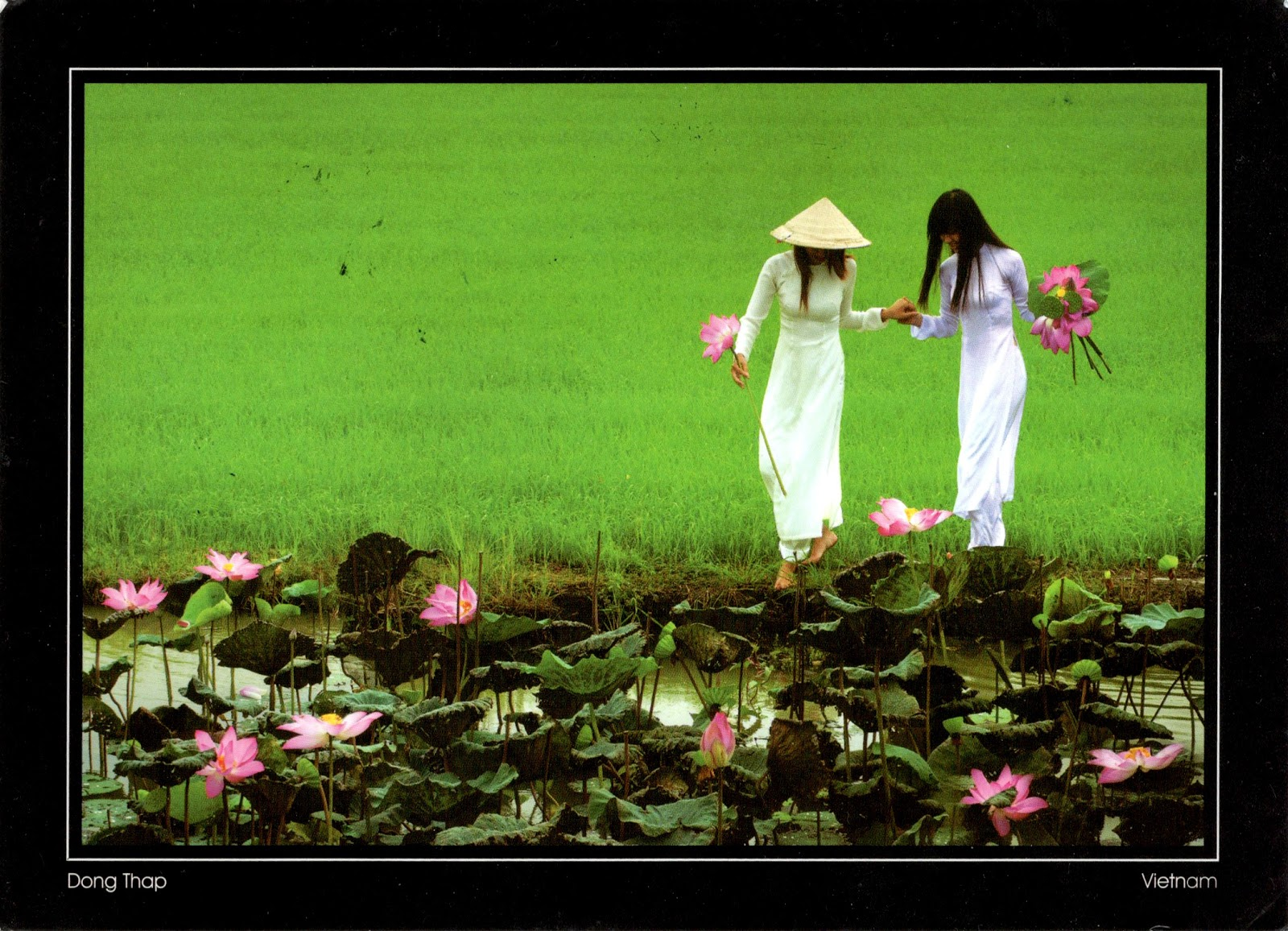World come to my home 3075 vietnam mekong delta ng thp 3075 vietnam mekong delta ng thp girls with lotus flowers mightylinksfo