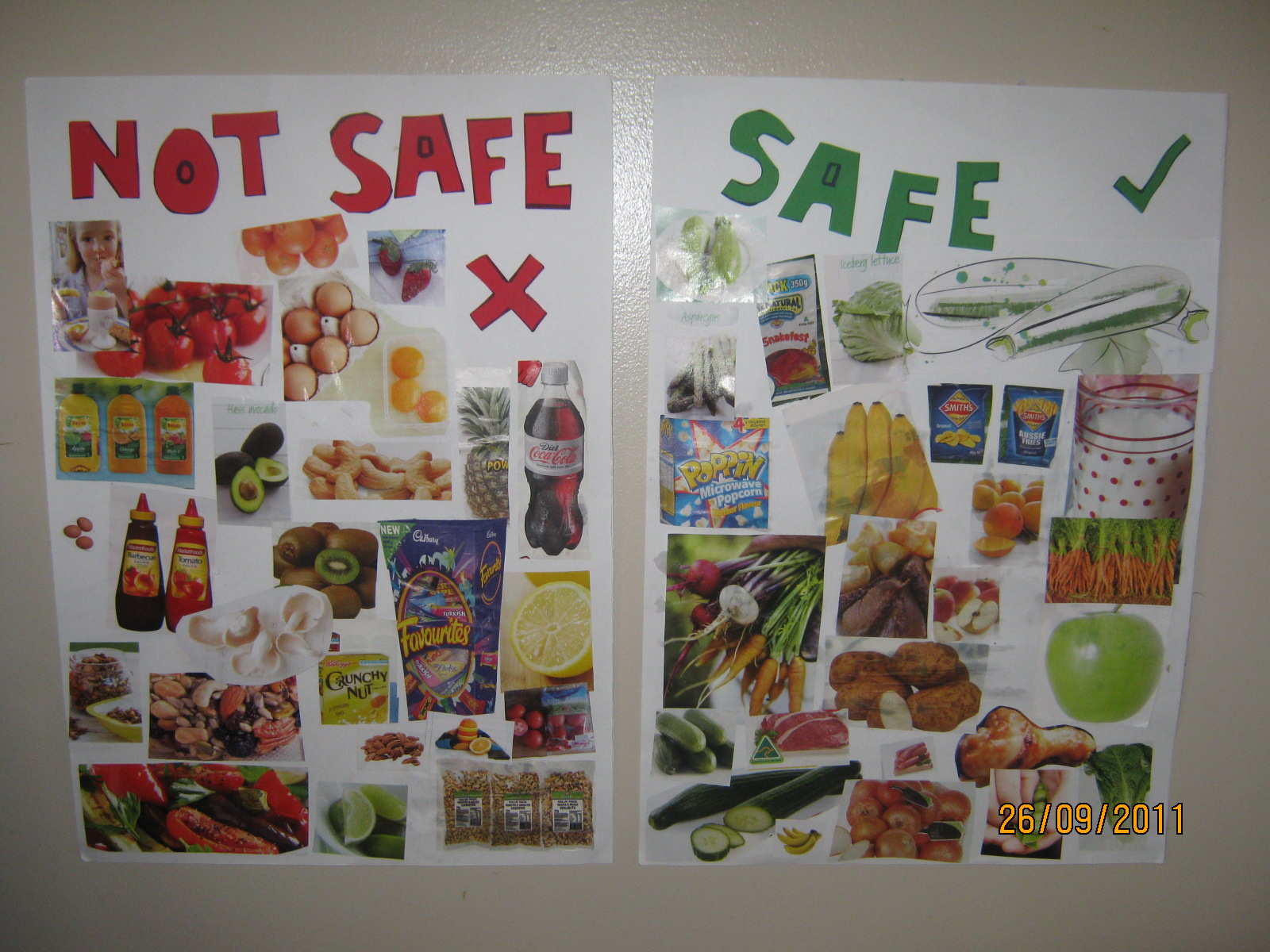Sublime Shambles Of A Shell Homemade Allergy Food Posters