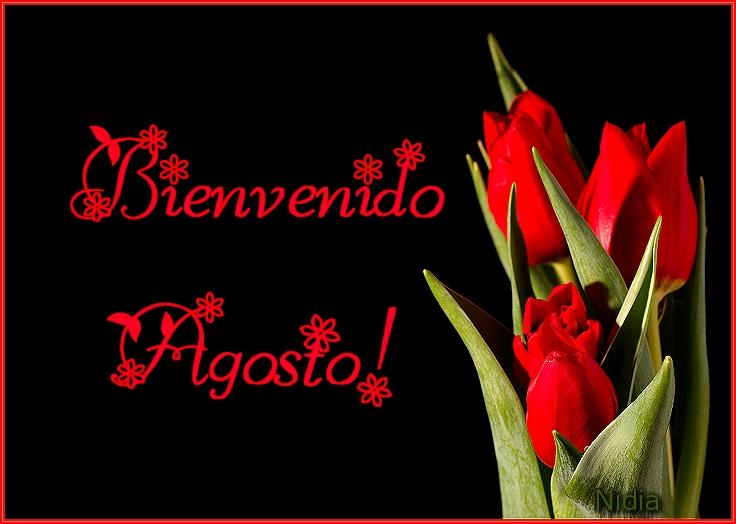 San Imagenes Feliz Valentin Dia De De De Amistad