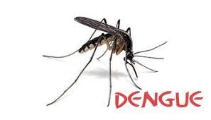 Mutirão de combate ao Aedes aegypti acontece nesta sexta na Estação Velha