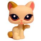 Littlest Pet Shop Multi Pack Cat Shorthair (#1692) Pet