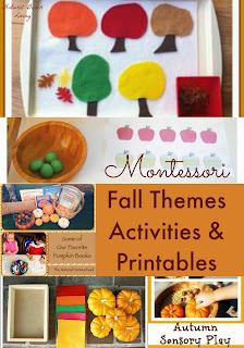 Montessori Toddler and Preschool Fall Themes {Montessori on a Budget} #Montessori #Fall