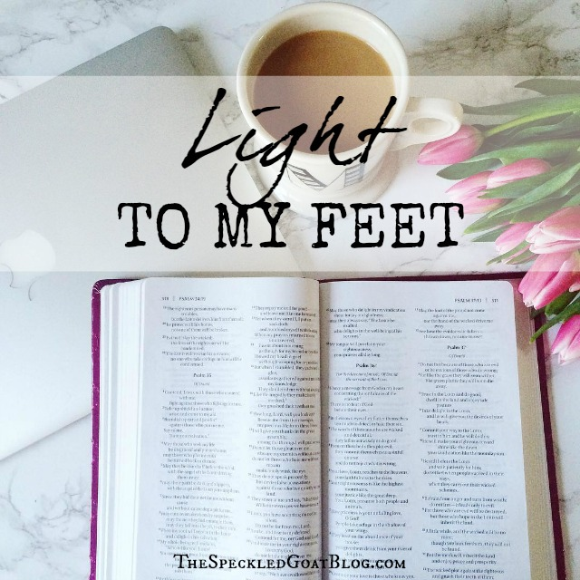 Light to My Feet: People argue about the Bible all the time, and yet, in the Psalms, we read that the Bible is a light to our path. Some thoughts about the clarity of the Bible, and what that means for us.