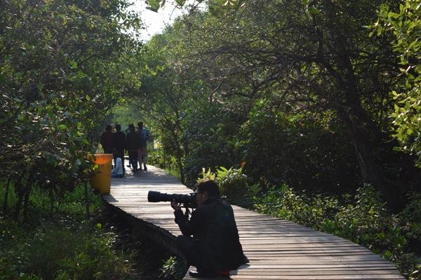Peta Lokasi Hutan Mangrove Wonorejo Surabaya