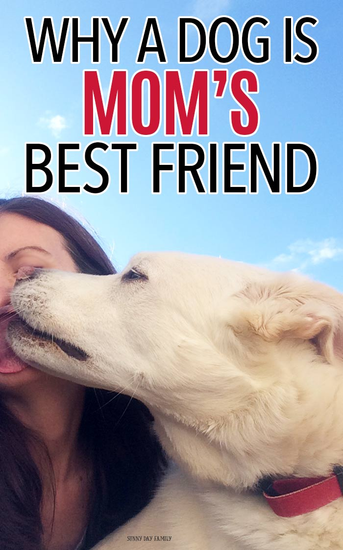 From your late night feeding companion to your designated floor cleaner, a dog is a new mom's best friend. #ad #DogsAreMore #dogmom