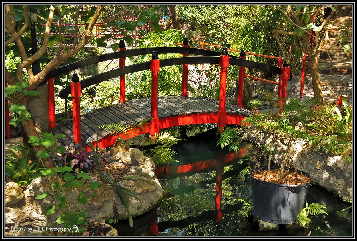 Ocala, Central Florida & Beyond: Cedar Lakes Woods & Gardens