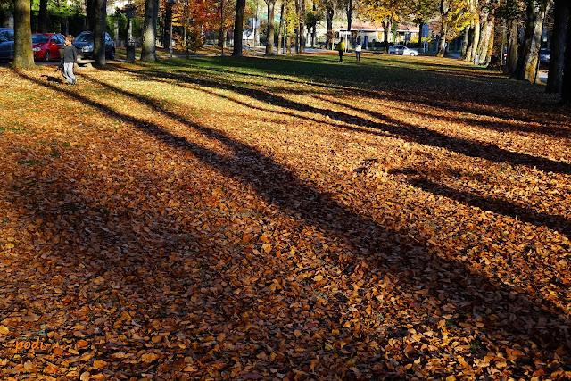 maristany camprodón tardor otoño autunno
