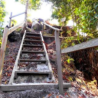Tangga kayu menjelang tiba di puncak batu dinding Borneo