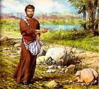 Resultado de imagen para El arroyo de Dios va lleno de agua, tú preparas sus trigales.