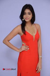 Actress Priyanka  Bharadwaj Pictures at Mister 420 Movie Logo Launch  0027.JPG