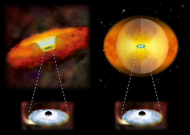 Merging galaxies have enshrouded black holes