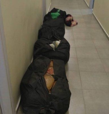 76 kg of marijuana seized in Igoumenitsa, 4 Albanians arrested