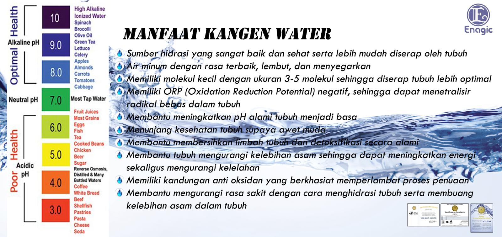 Jenis Mesin Kangen Water