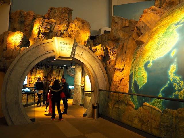 Beginning of the Hong Kong Story millions of year ago | Hong Kong Museum of History