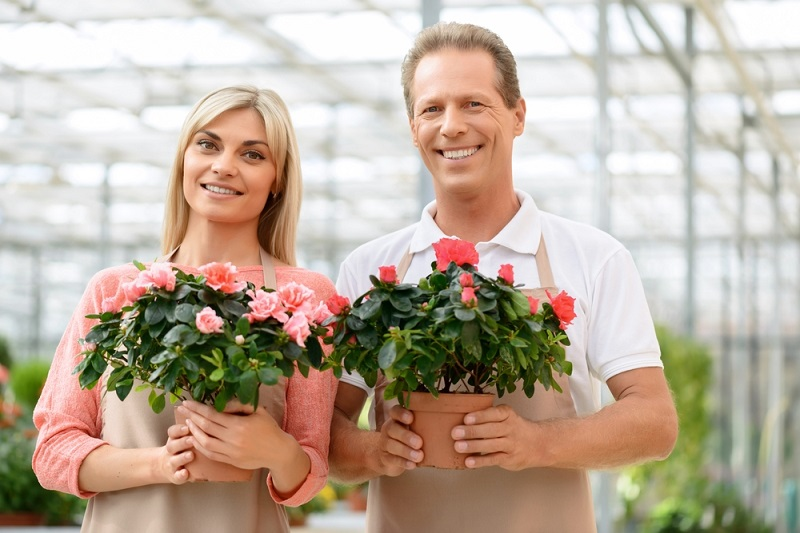 Best Florist Melbourne