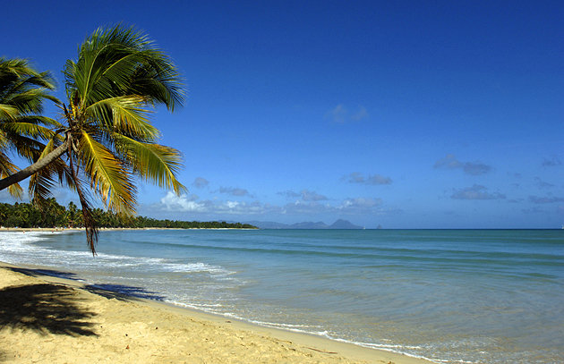 3d Wallpaper Download For Mobile Tourist Attractions In Martinique Most Beautiful Places