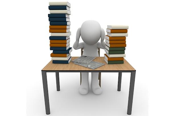 Panduan Pengembangan Silabus Mata Pelajaran SMA dan Madrasah Aliyah