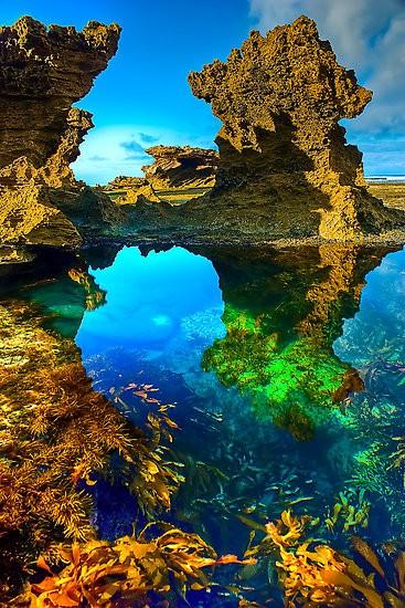 UN LUGAR: Sorrento Back Beach Australia 1