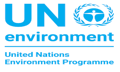 United Nations Environment Programme Intern Public Information (Champions of the Earth), Nairobi