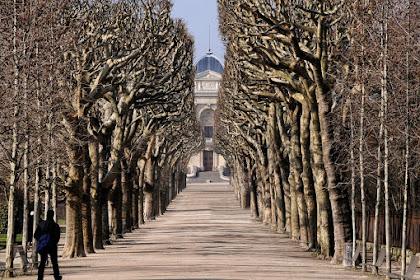 Jardin Des Plantes - Paris, Where  I Run Everyday I Paris Travel Guide - Travelling Hopper; July, 2016