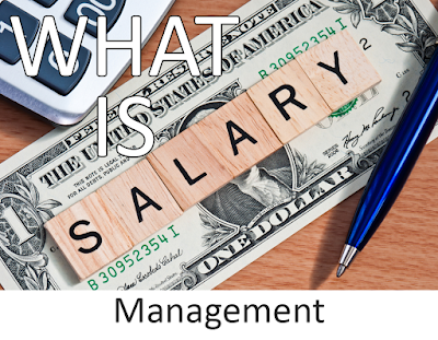 What is Salary Management? - A Must For You