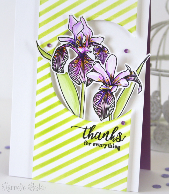Enchanted-iris-stamp-set