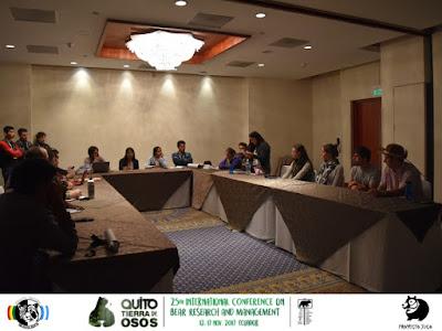 Reunión del Grupo de Expertos en Oso Andino y perspectivas a corto y mediano plazo sobre el estado de conservación de la especie