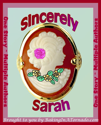 Sincerely Sarah, a Progressive Story Project. One story written by many authors each building on the contributions of the previous bloggers | brought to you by www.BakingInATornado.com | #fiction #writing