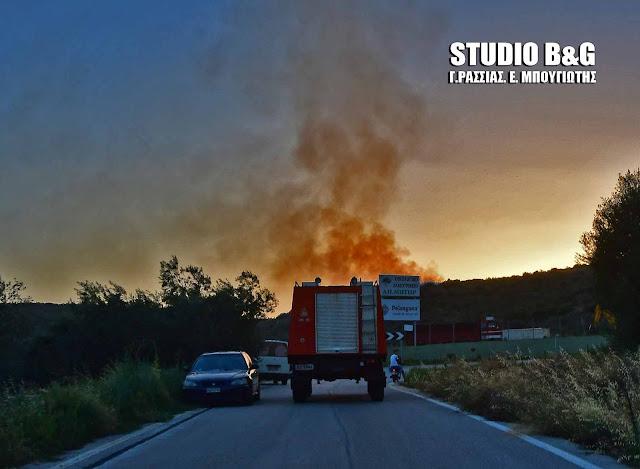 Αργολίδα: Πυρκαγιά στο Κρανίδι