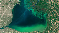 An algae bloom in Lake St. Clair in July 2015. The lake is bordered by Detroit, Michigan to the west and Canadian farmland to the east. (Credit: NASA/NOAA) Click to Enlarge.
