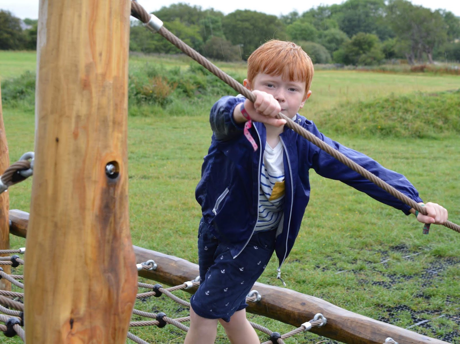 FREE Nature Trail at Derwent Waterside Park, Consett  - rope bridge
