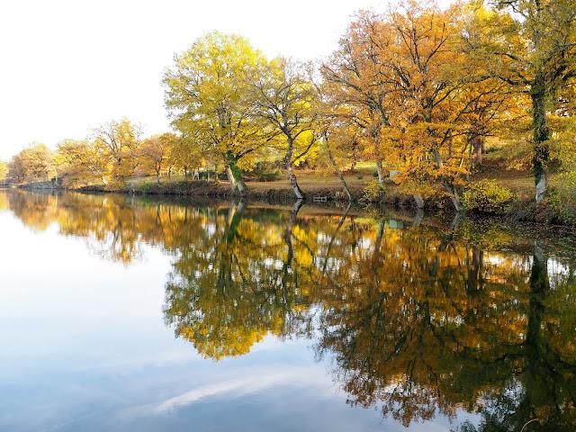 étang de Chaumes, allier, automne