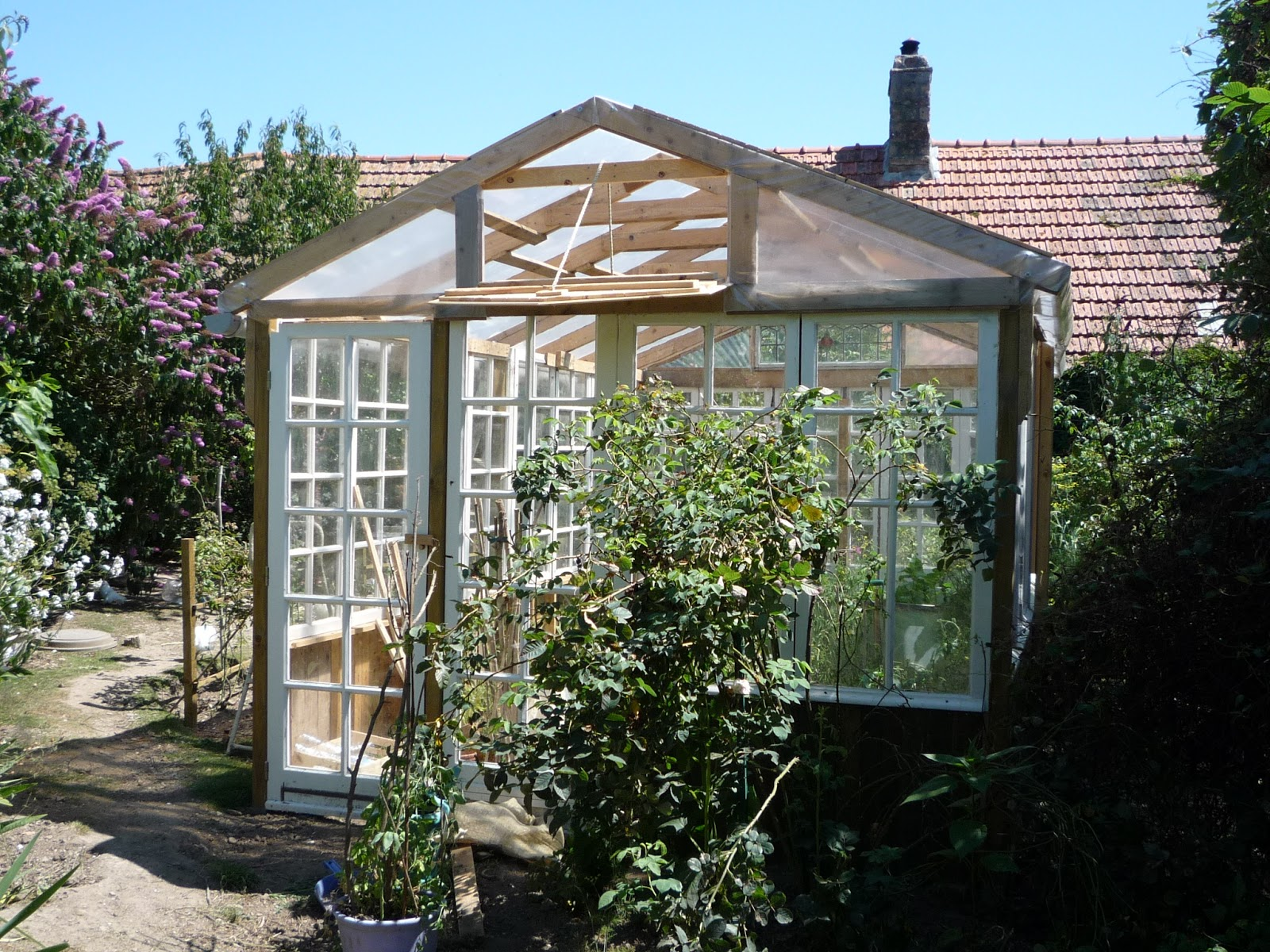 Home made big low cost glass greenhouse from free for House full of windows