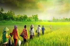 Kehidupan Manusia di Alam Dunia Sebelum Ke Alam Barzah