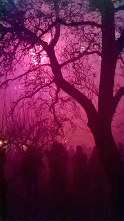 fireworks in orchards wassail procession