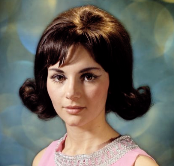 Model Rambut Bouffant
