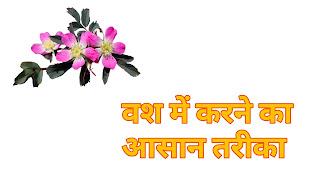 किसी को वश में करने का घरेलु उपाय, kisi ko apne vash me kaise kare in hindi