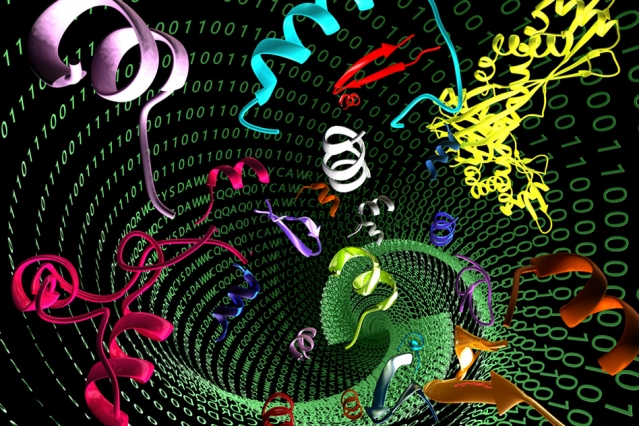 Artificial antimicrobial peptides could help overcome drug-resistant bacteria