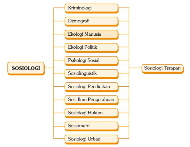Cabang-Cabang Sosiologi (Sosiologi Umum dan Khusus | 10 Cabang Sosiologi)