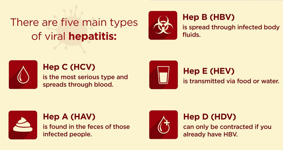 The 5 types of viral hepatitis