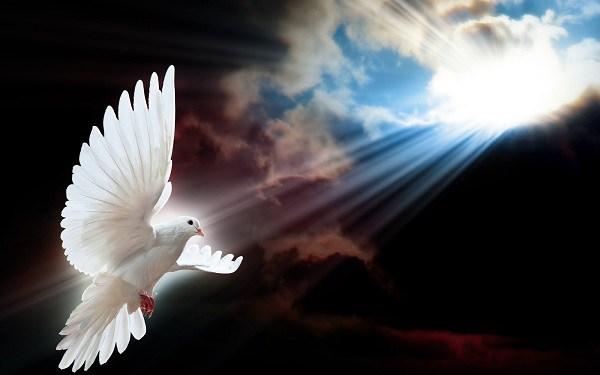 Precisamos aprender com o Espírito Santo - Leia essa mensagem