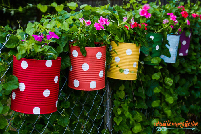 tin can flower garden