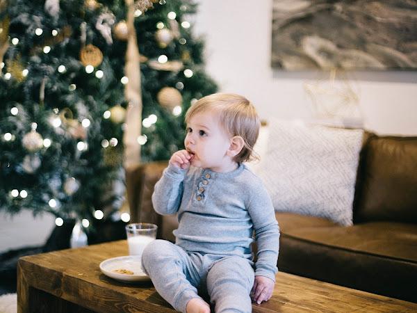 Kreasi Camilan Biskuit Bayi Alami Buatan Sendiri