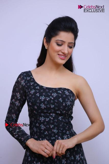 Telugu Actress Richa Panai Stills in One Shoulder Floral Long Dress at Rakshaka Bhatudu Movie Interview  0064.JPG