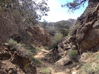Heading north in a slot canyon on Panorama Loop Trail, Black Rock Canyon, Joshua Tree National Park