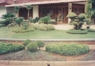 Galeri Taman - Tukang Taman Surabaya 10