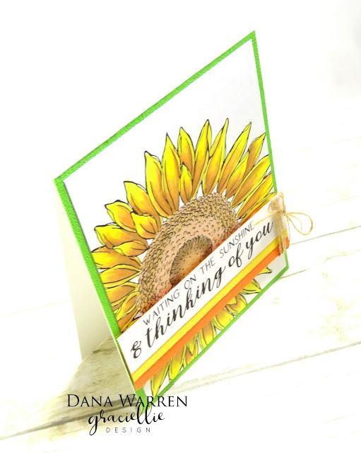 Dana Warren - Kraft Paper Stamps - Graciellie Designs - Spectrum Noir Tri-Blend Markers